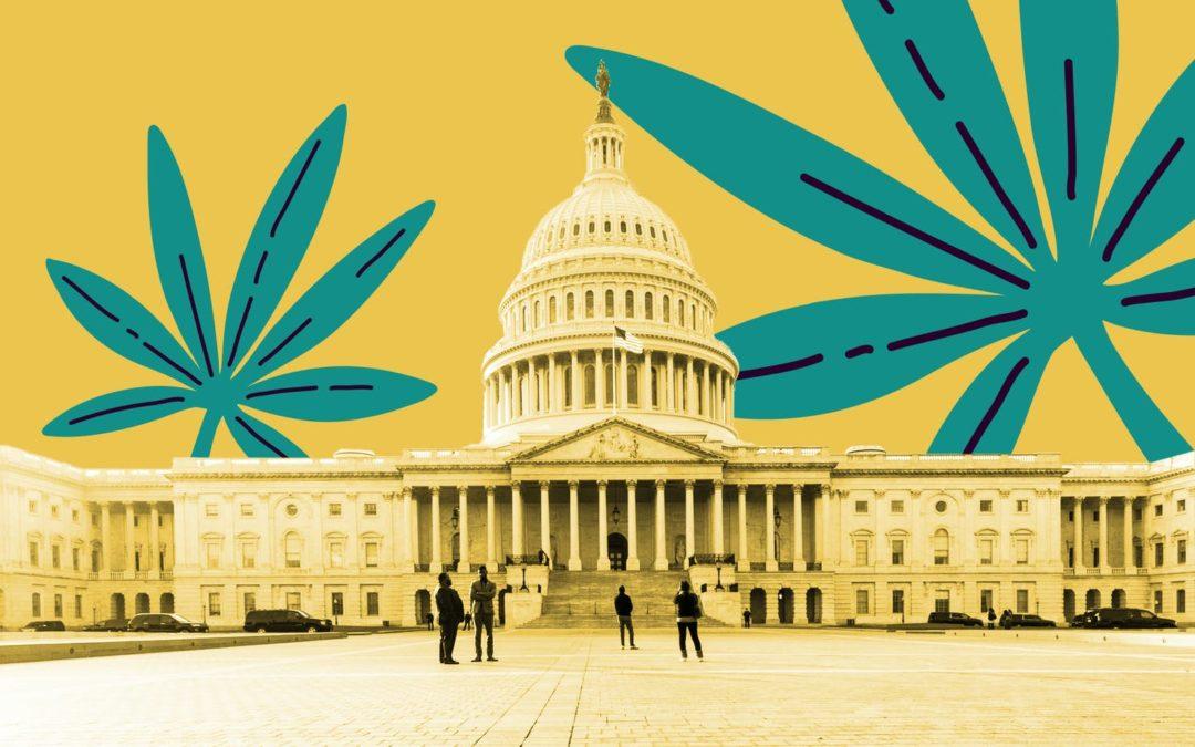 mmj card medical marijuana legalization